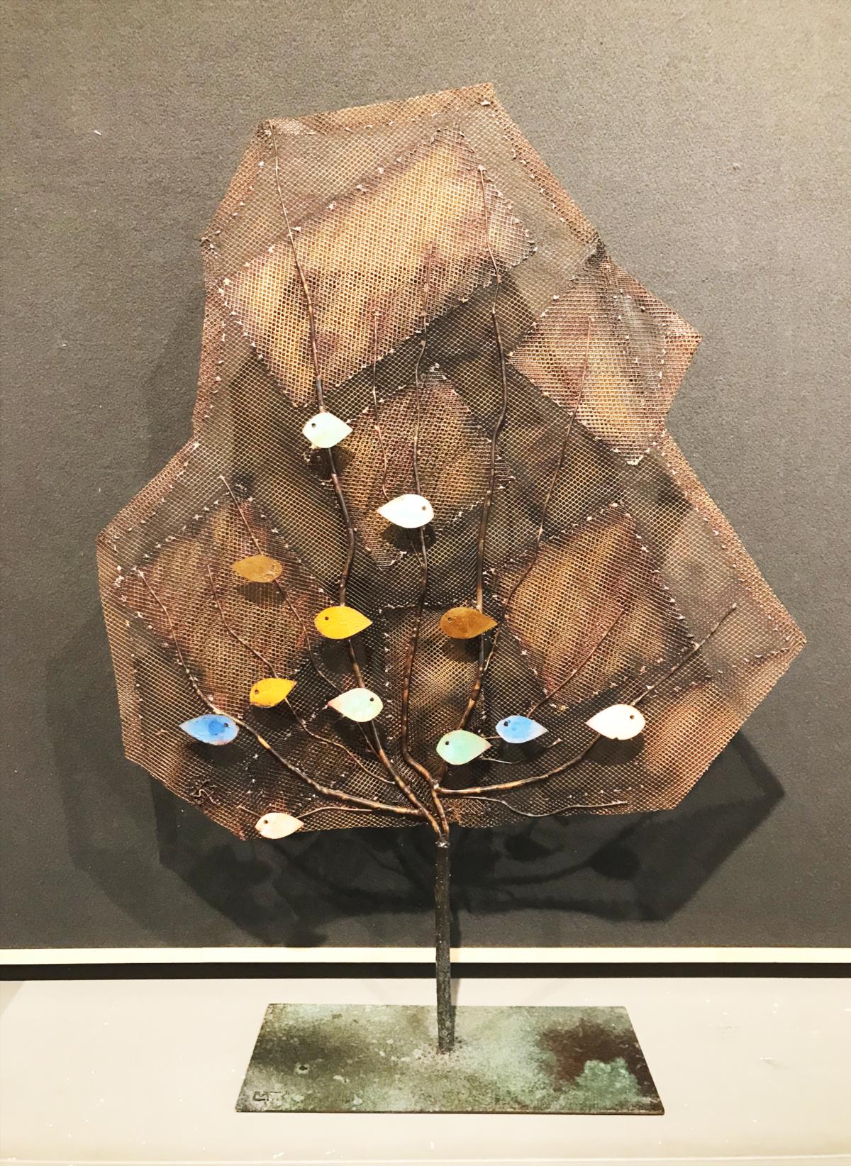 gorgonia arlecchino