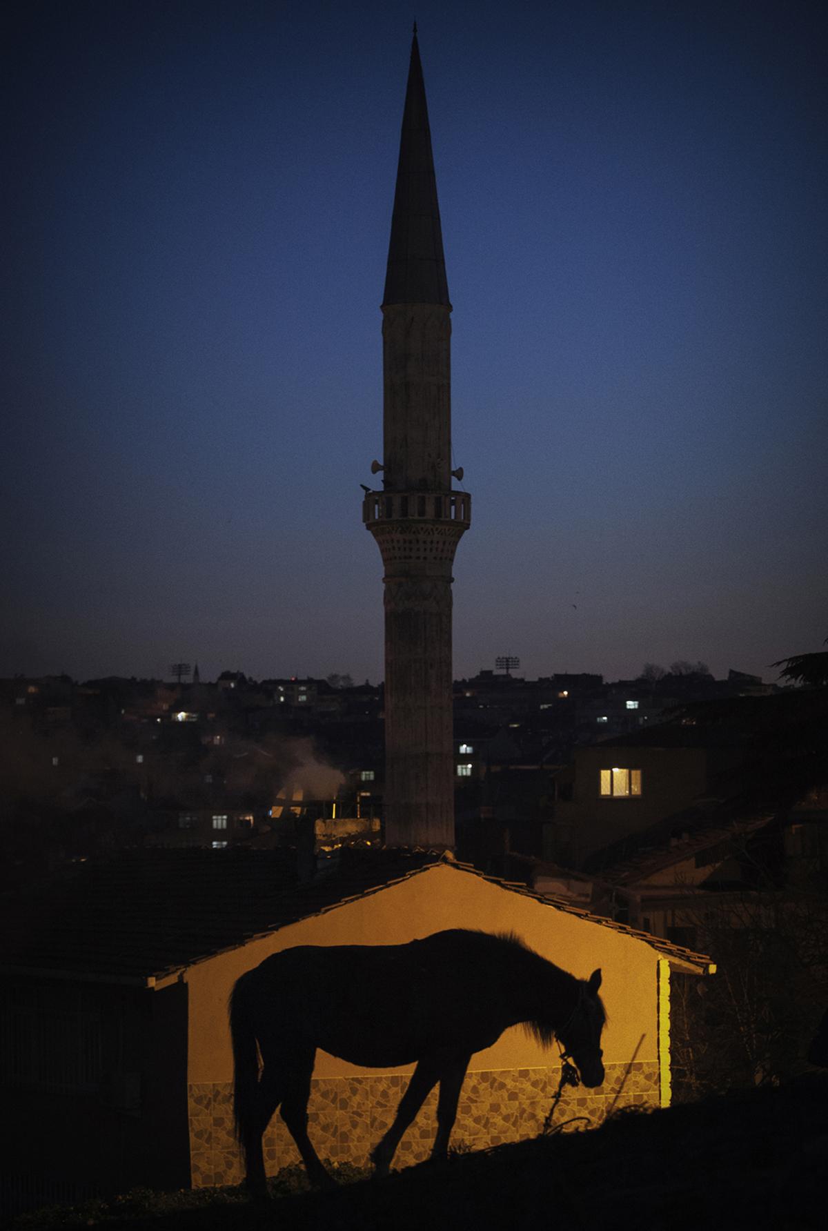 LUBNATSI (serie) Istanbul, Turchia